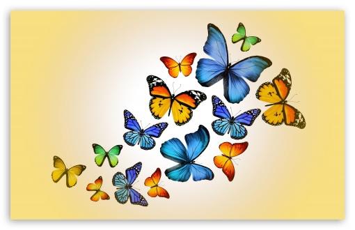 Mariposas en el jardín