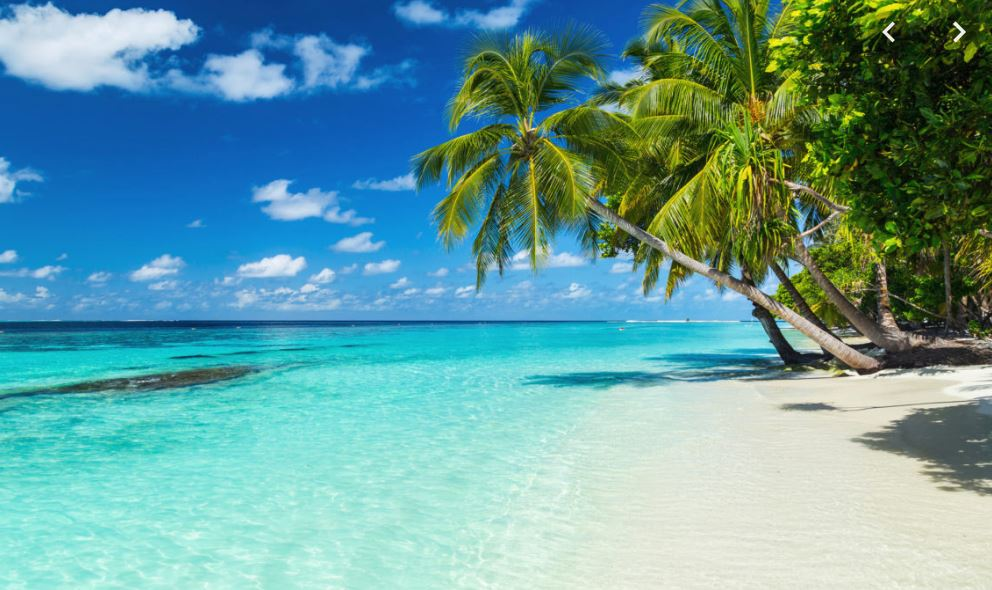 Vacaciones especiales